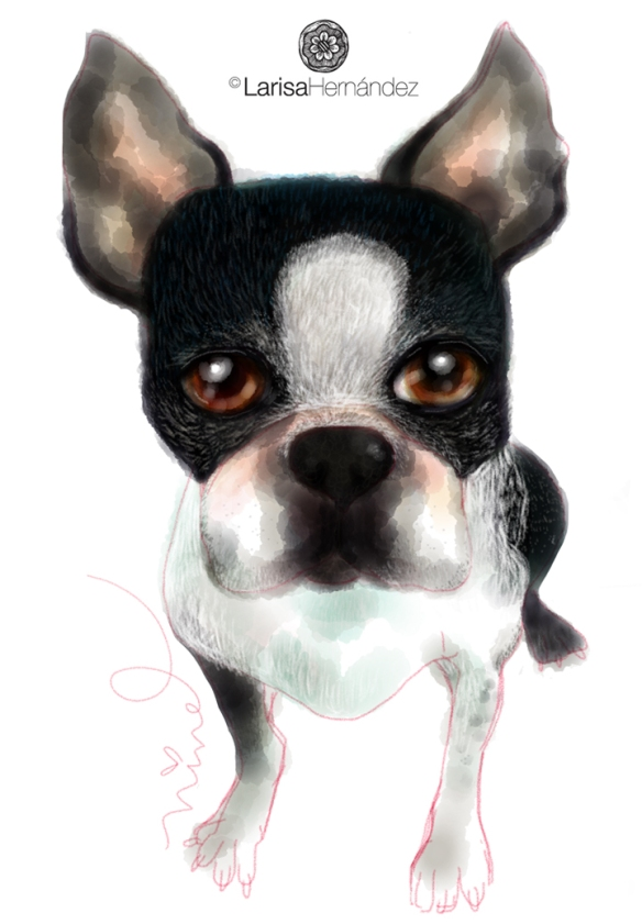 Meet JAG! my cousin's dog, who died some years ago. She misses him a lot, I Made this illustration as a birthday gift for her.